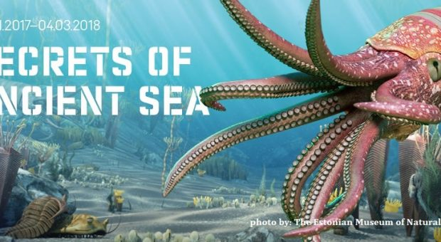 "Tallinn: Exhibition ""Secrets of the Ancient Sea"""